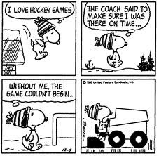 163 snoopy zamboni 2.jpeg normal