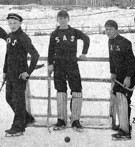 392-ice_polo_1890.jpg-normal