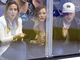 Hilary Duff & sister Haylie with Mike Comrie at a LA Kings Game