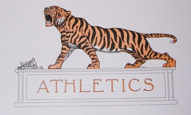 Princeton Tigers Logo / Princeton University Hockey 1911