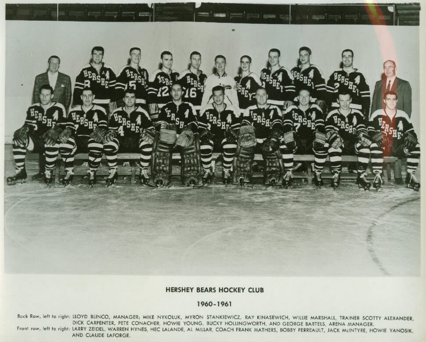 Hershey Bears 1960 American Hockey League Hockeygods