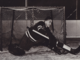 Sugar Jim Henry 1947 New York Rangers
