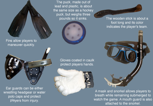 Underwater Hockey Equipment