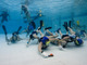 Underwater Hockey Game
