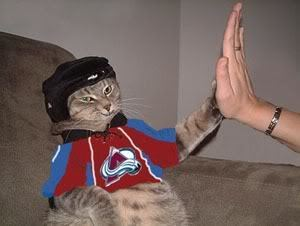 Cool Hockey Cat giving a High Five for the Colorado Avalanche
