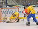 Inline Hockey at World Championships,  Sweden vs Czech Republic